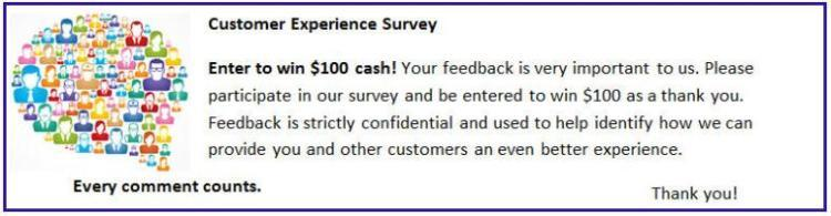 Customer Experience Survey